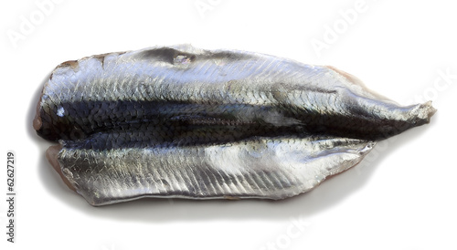 Atlantic herring fillet on white background