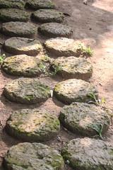 Stone block walk path in the park