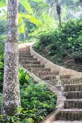 Stone ladder in park