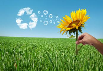 eco energy  park