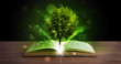 canvas print picture - Open book with magical green tree and rays of light