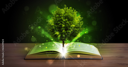canvas print picture Open book with magical green tree and rays of light