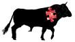 concept viande de boucherie