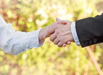Business handshake - successful business