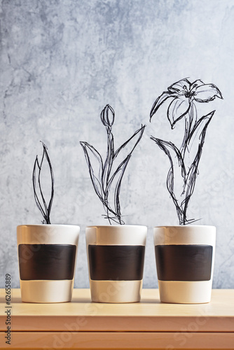 Flower Growth stages sketch