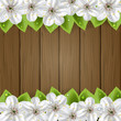 White flower on wooden background