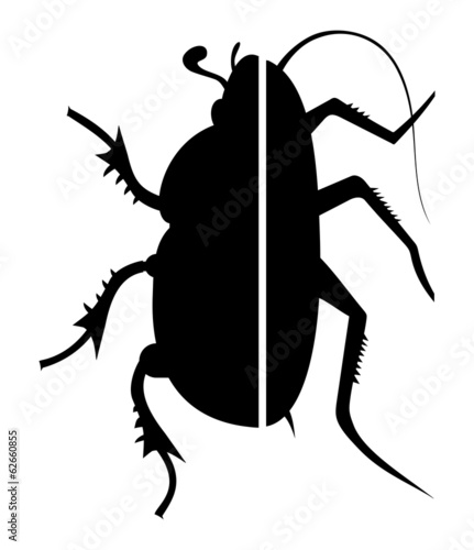 Cockroach and beetle