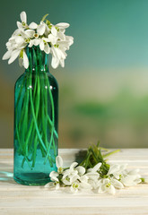 Beautiful snowdrops in bottle, on nature background