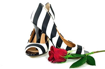 striped pumps with red rose