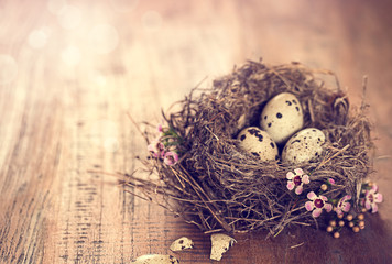 birds nest with eggs and tiny pink flowers on a wooden table