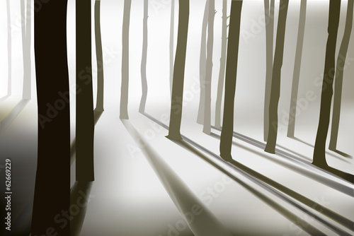 mysterious forest - 62669229