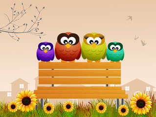 family of owls on the bench