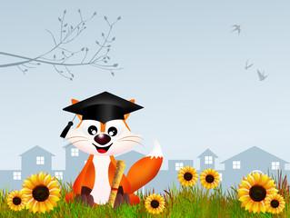 fox graduate