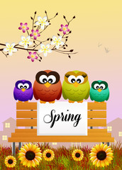 owls in spring