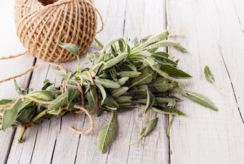 Bunch of fresh organic sage on wooden table