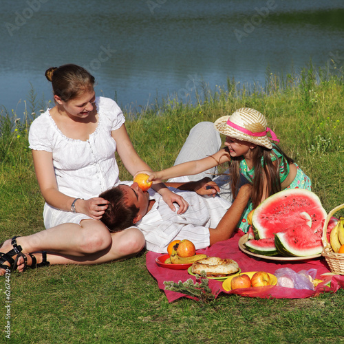 canvas print picture  picnic