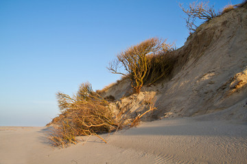 Erosion of dunes