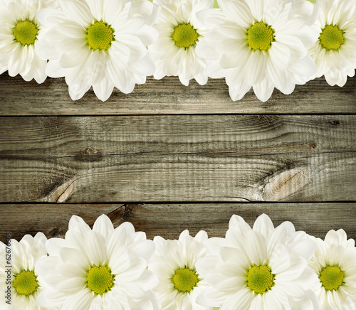 Wooden background with daisy flowers