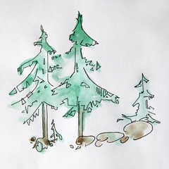 Illustration of evergreen tree. Decorative fir tree.