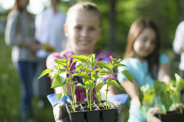 Organic Farm. Summer Party. A Young Girl Holding Out A Tray Of Seedling Plants.