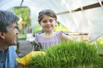 On The Farm. A Glasshouse. Trays Of Fresh Green Herbs. An Adult And A Child Tending To The Plants. A Man And A Young Girl.
