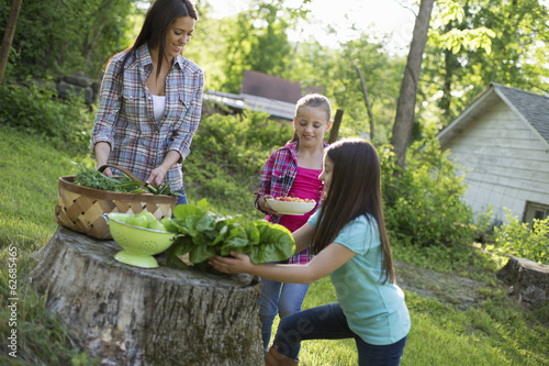 Organic Farm. Summer Party. Two Girls And A Young Woman Preparing Salads And Vegetables For A Meal.