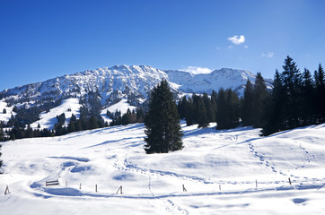 Winter in Allgau