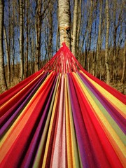 rainbow hamac