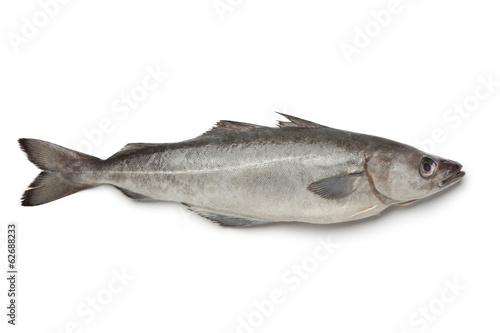 Fototapeta Fresh atlantic pollock fish