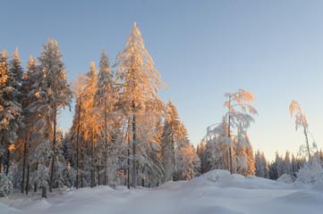 Deutschland, Blick auf Schwarzwald im Winter