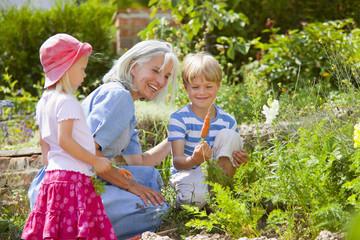Deutschland, Bayern, Großmutter mit Kindern Inspektion Möhren im Garten