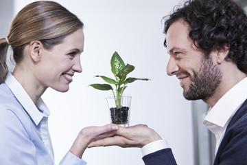 Deutschland, Köln, Businesscouple halten Topfpflanze