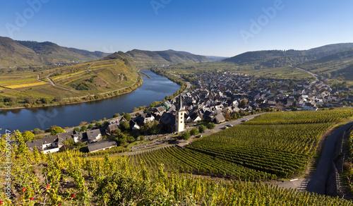 Deutschland, Rheinland-Pfalz, Ansicht der Stadt in der Nähe von Bremm, Mosel