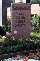 """Rose auf Grabstein legen, """"hab Dank Mutti"""""""