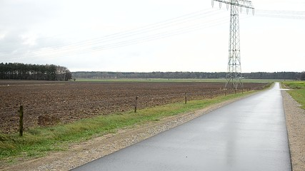 Asphalt road in the landscape
