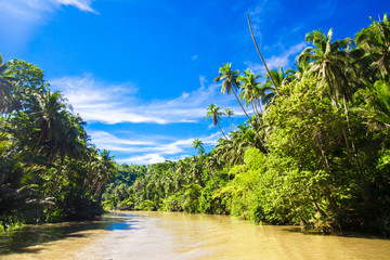 Tropical Loboc river, blue sky, Bohol Island, Philippines