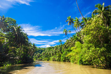 Tropical Loboc river at the island Bohol in the Philippines