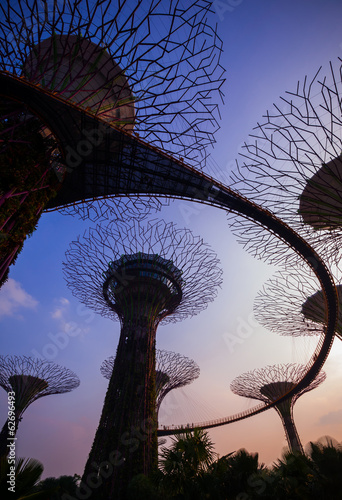 Supertree at Garden by the bay at twilight