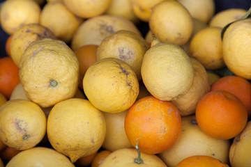 Raccolta agrumi
