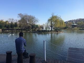 Yapay Göl
