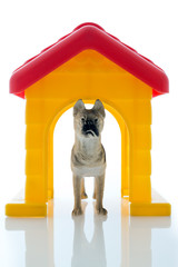 toy guard dog
