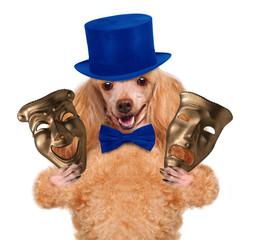Dog c theatrical mask