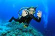 Leinwandbild Motiv Female Scuba Diver