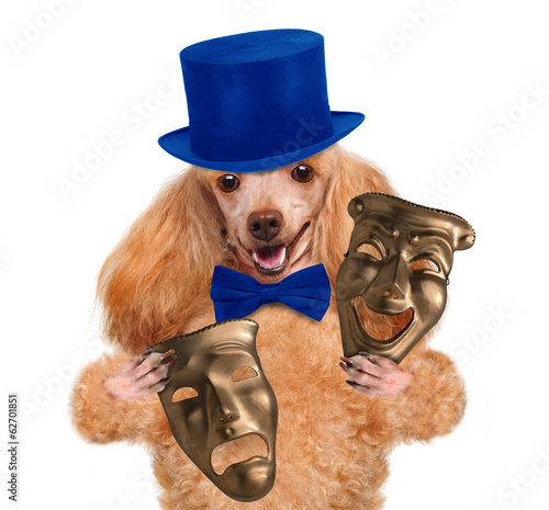 Dog c theatrical mask
