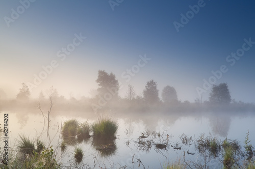 misty calm sunrise over swamp
