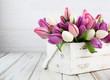 Obrazy na płótnie, fototapety, zdjęcia, fotoobrazy drukowane : tulip background
