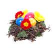 Osternest mit Eiern und Blüten