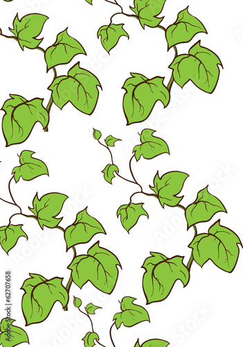 Ivy vector hand drawn vertical seamless pattern