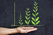 Hands holding tree arranged as a green graph on soil