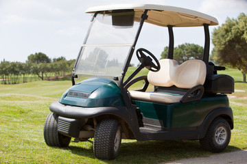 Golf cart parked on a fairway